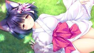 Rating: Safe Score: 86 Tags: animal_ears catgirl game_cg japanese_clothes kimono lump_of_sugar moekibara_fumitake nekotsuku_sakura. tsuki_(nekotsuku_sakura.) User: mattiasc02