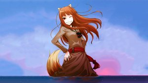 Rating: Safe Score: 172 Tags: animal_ears brown_hair clouds horo long_hair ookami_to_koushinryou photoshop red_eyes sky stars sunset tail water wink wolfgirl User: JFusion