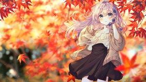 Rating: Safe Score: 73 Tags: aqua_eyes autumn bbeedol blush braids flowers leaves long_hair original purple_hair skirt User: BattlequeenYume