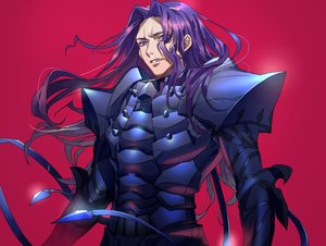 Rating: Safe Score: 11 Tags: all_male armor fate/grand_order fate_(series) lancelot_(fate) long_hair male purple_eyes purple_hair red tenobe User: otaku_emmy