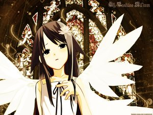 Rating: Safe Score: 30 Tags: black_eyes brown_hair long_hair saya saya_no_uta wings User: Oyashiro-sama