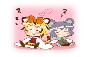 Rating: Safe Score: 3 Tags: animal_ears azuharu catgirl chibi mousegirl nazrin sleeping tail toramaru_shou touhou User: SciFi