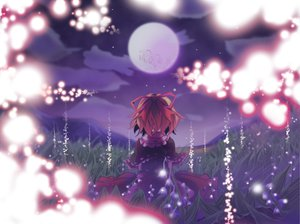 Rating: Safe Score: 56 Tags: blonde_hair flowers medicine_melancholy mito_(calcomer) moon short_hair touhou User: PAIIS
