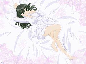 Rating: Safe Score: 17 Tags: pajamas seto_no_hanayome shiranui_akeno User: Oyashiro-sama