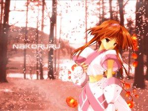 Rating: Safe Score: 12 Tags: nakoruru petals samurai_spirits suzuhira_hiro User: Oyashiro-sama