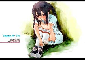 Rating: Safe Score: 47 Tags: black_hair brown_eyes k-on! long_hair minimaru nakano_azusa User: SciFi