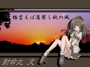Rating: Safe Score: 20 Tags: shameimaru_aya sunset touhou User: Oyashiro-sama