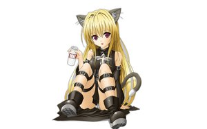 Rating: Safe Score: 99 Tags: animal_ears blonde_hair boots catgirl golden_darkness panties tail to_love_ru underwear white User: modapi