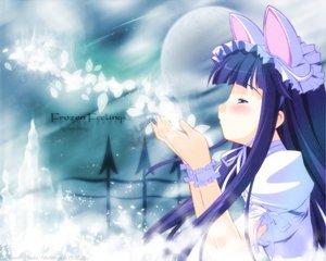 Rating: Safe Score: 16 Tags: animal_ears hazuki moon petals tsukuyomi_moon_phase User: Oyashiro-sama