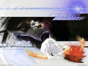 Rating: Safe Score: 10 Tags: all_male dark_mousy dnangel male niwa_daisuke purple_hair red_hair sugisaki_yukiru wings User: Oyashiro-sama