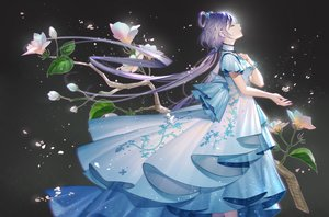 Rating: Safe Score: 71 Tags: chinese_clothes chinese_dress dress flowers gray long_hair luo_tianyi purple_hair tidsean twintails vocaloid vocaloid_china wristwear User: otaku_emmy