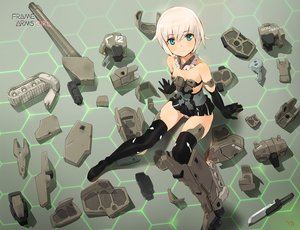 Rating: Safe Score: 82 Tags: frame_arms_girl gourai yang-do User: RyuZU