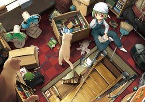 Rating: Safe Score: 65 Tags: aikei_ake animal book cat fan green_hair hat original red_eyes short_hair socks stairs waifu2x User: otaku_emmy
