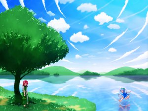 Rating: Safe Score: 24 Tags: cirno grass hong_meiling sky touhou water User: Tensa