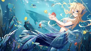 Rating: Safe Score: 84 Tags: animal aqua_eyes bikini_top blonde_hair daidai_gege fish long_hair mermaid original underwater water User: BattlequeenYume