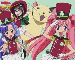 Rating: Safe Score: 6 Tags: akamatsu_ken animal cat maruyama_silvia onigawara_mao rikujou_bouei-tai_mao-chan tagme tsukishima_misora User: Oyashiro-sama