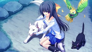 Rating: Safe Score: 38 Tags: animal bird black_hair bow cat dog game_cg kneehighs long_hair lunaris_filia mikagami_mamizu minase_yukari purple_eyes water whirlpool User: Maboroshi