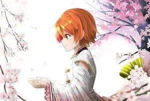 Rating: Safe Score: 30 Tags: flowers green_eyes hoshizora_rin love_live!_school_idol_project orange_hair orein petals short_hair User: RyuZU