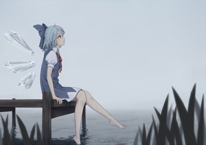 Rating: Safe Score: 53 Tags: aliasing aqua_hair barefoot bow cirno dress dtvisu fairy short_hair touhou water wings User: RyuZU