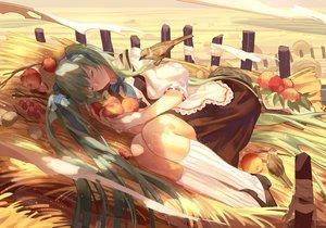 Rating: Safe Score: 43 Tags: animal apple bird bow fruit hatsune_miku sleeping vocaloid zicai_tang User: Flandre93
