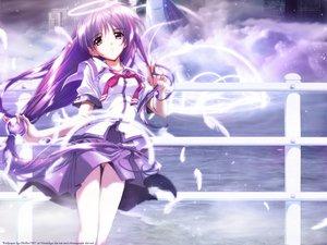 Rating: Safe Score: 17 Tags: building clouds feathers halo iriya_kana iriya_no_sora_ufo_no_natsu purple_hair red_eyes school_uniform vector water watermark User: Oyashiro-sama