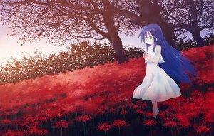 Rating: Safe Score: 79 Tags: barefoot blue_hair dress flowers isou_nagi izumi_kanata lucky_star User: HawthorneKitty