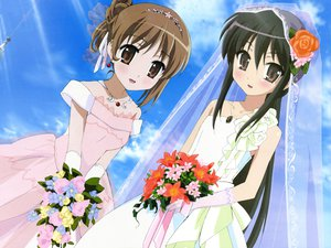 Rating: Safe Score: 18 Tags: black_hair brown_eyes brown_hair elbow_gloves flowers gloves necklace shakugan_no_shana shana sky wedding wedding_attire yoshida_kazumi User: Oyashiro-sama