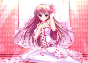 Rating: Safe Score: 243 Tags: blush breasts cleavage dress flowers long_hair mikeou navel nopan original petals pink_chuchu purple_eyes see_through thighhighs wedding_attire User: Wiresetc