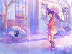 Rating: Safe Score: 98 Tags: animal boots cat kneehighs original rain shati short_hair skirt umbrella water User: FormX