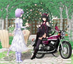 Rating: Safe Score: 73 Tags: animal_ears dress kuroinu motorcycle panties tail thighhighs underwear User: rayrei