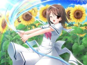 Rating: Safe Score: 4 Tags: amesarasa brown_eyes brown_hair flowers kumihama_mitsuha sunflower User: Oyashiro-sama