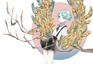 Rating: Safe Score: 17 Tags: anthropomorphism houseki_no_kuni mitoshi phosphophyllite User: FormX