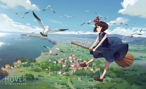 Rating: Safe Score: 44 Tags: animal bird clouds dress kiki majo_no_takkyuubin sky summer_dress witch yusheng User: FormX