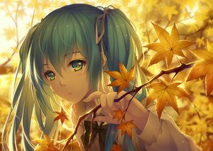 Rating: Safe Score: 309 Tags: aqua_eyes aqua_hair autumn bicolored_eyes bow hatsune_miku leaves long_hair ribbons tidsean twintails vocaloid User: Flandre93