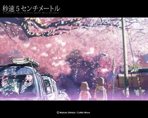 Rating: Safe Score: 20 Tags: brown_hair byousoku_5_centimetre car cherry_blossoms flowers petals shinkai_makoto shinohara_akari short_hair toono_takaki tree User: Oyashiro-sama