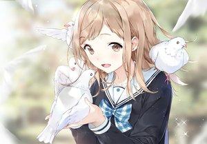 Rating: Safe Score: 98 Tags: akiru_(igel-flutter) animal bird blush bow brown_eyes brown_hair close idolmaster_shiny_colors sakuragi_mano short_hair User: RyuZU
