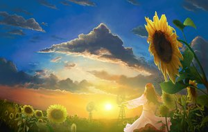 Rating: Safe Score: 83 Tags: brown_hair clouds dress flowers landscape long_hair scenic sky sunflower sunset User: Maboroshi