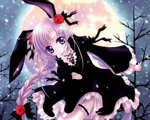 Rating: Safe Score: 37 Tags: animal_ears blue_eyes braids bunny_ears bunnygirl cropped dress flowers garter goth-loli lolita_fashion long_hair moon nishiwaki_yuuri purple_hair ribbons rose scan snow twintails User: Oyashiro-sama