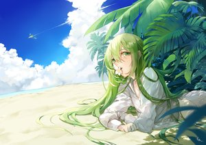 Rating: Safe Score: 33 Tags: all_male beach clouds enkidu fate/grand_order fate_(series) green_eyes green_hair long_hair male saki_(nighters) shirt signed sky water User: BattlequeenYume