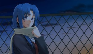 Rating: Safe Score: 64 Tags: blue_hair jpeg_artifacts kawashima_ami purple_eyes toradora User: Tensa
