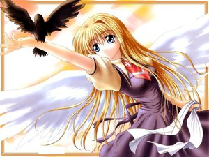 Rating: Safe Score: 17 Tags: air angel animal bird kamio_misuzu key r visualart wings User: Oyashiro-sama