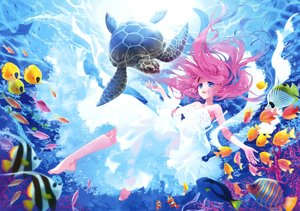 Rating: Safe Score: 144 Tags: animal barefoot blue_eyes carnelian dress fish long_hair pink_hair scan turtle underwater water User: Flandre93