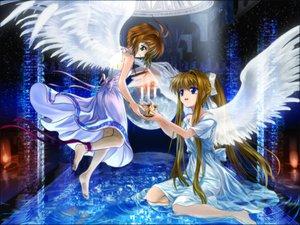 Rating: Safe Score: 27 Tags: air card_captor_sakura kamio_misuzu kinomoto_sakura moonknives wings User: 秀悟