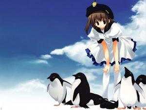 Rating: Safe Score: 9 Tags: animal bird mitsumi_misato penguin User: Oyashiro-sama