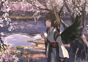 Rating: Safe Score: 54 Tags: brown_hair cherry_blossoms flowers japanese_clothes pointed_ears saltlaver shameimaru_aya short_hair touhou tree water wings User: RyuZU
