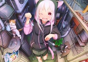 Rating: Safe Score: 67 Tags: abo_(kawatasyunnnosukesabu) animal animal_ears blush cat catgirl fish hoodie long_hair original pink_hair red_eyes tail wink User: RyuZU