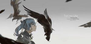 Rating: Safe Score: 104 Tags: animal aqua_hair bandaid bird hatsune_miku mivit tears twintails vocaloid watermark User: Flandre93