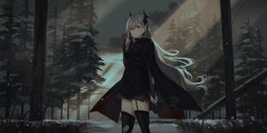 Rating: Safe Score: 102 Tags: blood chihuri405 dark dress elbow_gloves forest garter_belt gloves grass gray_hair horns long_hair original pixiv_fantasia red_eyes stockings thighhighs tie torn_clothes tree zettai_ryouiki User: ssagwp
