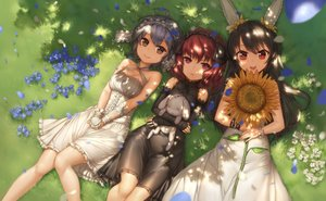 Rating: Safe Score: 35 Tags: animal_ears black_hair brown_eyes dress elbow_gloves flowers gloves grass gray_hair long_hair orange_eyes petals qingmingtongzi shade short_hair sunflower User: RyuZU