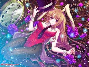 Rating: Safe Score: 55 Tags: animal_ears bunny_ears bunnygirl galge.com leotard logo User: Kamina_Aniki